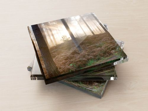 Forest Dawn - Glass Coasters